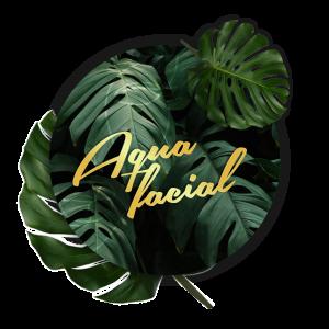 AquaFacial